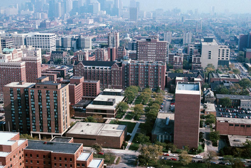 17. College of Nursing, University of Illinois at Chicago – Chicago, Illinois